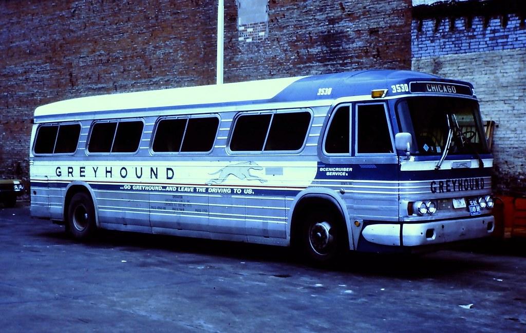 Greyhound Bus 3530 Gm Pd4106 Taken At St Louis Mo In
