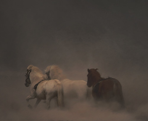 3 On a hot and dusty day. | by Sverrir Thorolfsson