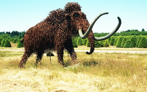 Wooly Mammoth | by Great Beyond