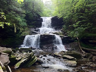 Ricketts Glen State Park 2011-06-18 043 | by Intrepid00
