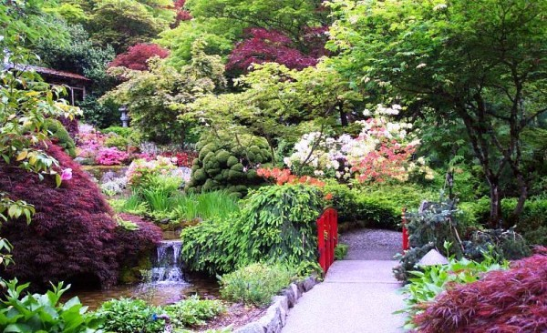 jardines japoneses armona natural by decor obra - Jardines Japoneses