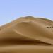 Desert Sand - Explore