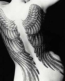 Tatuajes De Alas De Angel 01 Gloryetadiaz Flickr