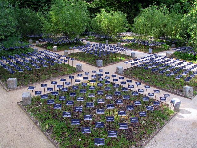 jardin d 39 avenir ou l 39 art de la biodiversit heureus flickr photo sharing. Black Bedroom Furniture Sets. Home Design Ideas