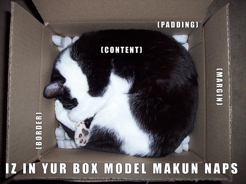 LOL BOX MODEL | by cmdshiftdesign