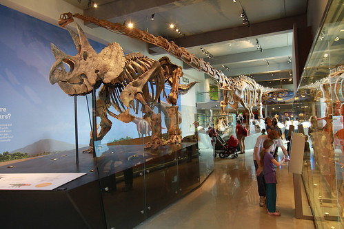 LA Natural History Museum's member preview of the new Dinosaur Hall | by JeremiahGarcia