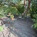 KJM-Gardens-0399