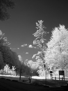 IR Brightly lit | by Lone Primate