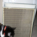 Old Hepa Filter + a cat