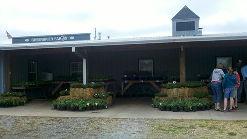 Greenbrier Farms Spring Plant Sale -April 2011 | by webaggression