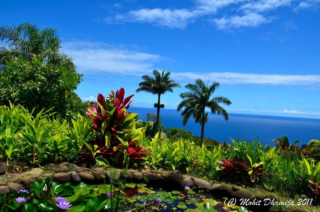 garden of eden hana drive maui mohit dhamija flickr