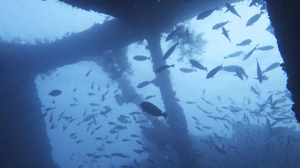 USAT Liberty Wreck, Tulamben, Bali