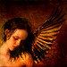 Forbidden To Fly, The Angel Wept For All Eternity