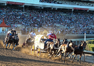 Chuck Wagon Races | by Calgary Stampede