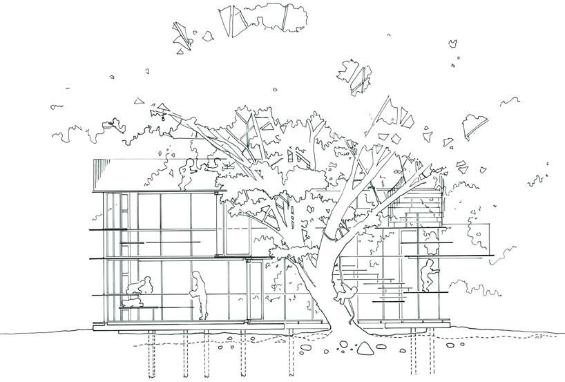 tezuka architects fuji kindergarten ring around tree dra flickr