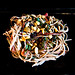 Soba Noodles with Red Chard, Raisins and Toasted Pine Nuts