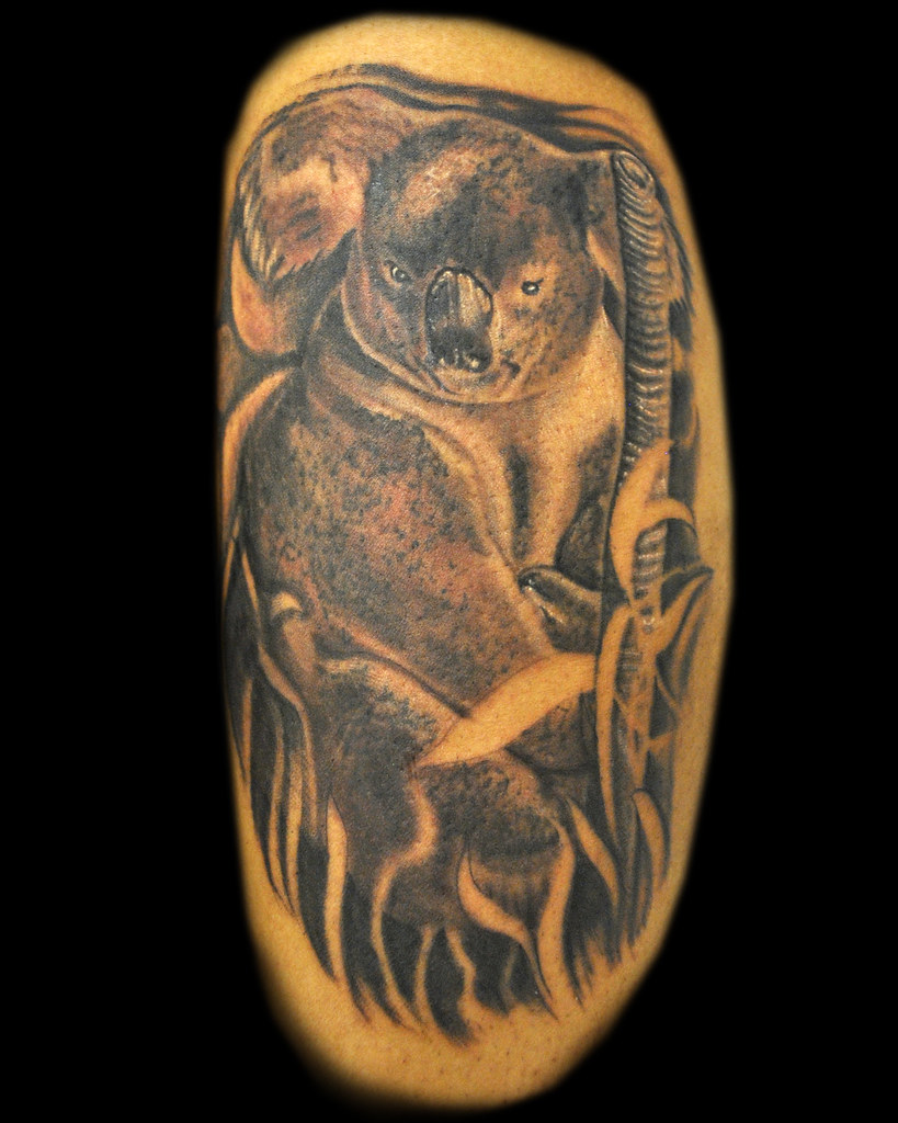 Koala Bear Tattoo Www Topsimages Com