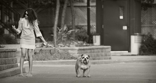 womenWithDogs_15-bw | by The-Wizard-of-Oz