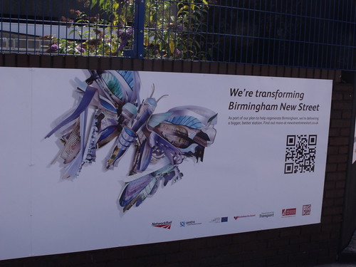 Birmingham New Street Station - hoardings art - caterpillar's and butterfly's | by ell brown