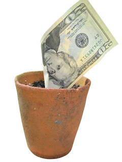 Money doesn't grow in pots | by Images_of_Money