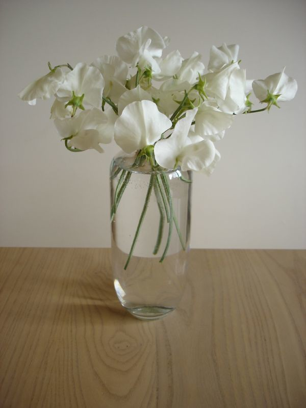 Sweet Peas In Vase On Table Madeleine Middleton Flickr