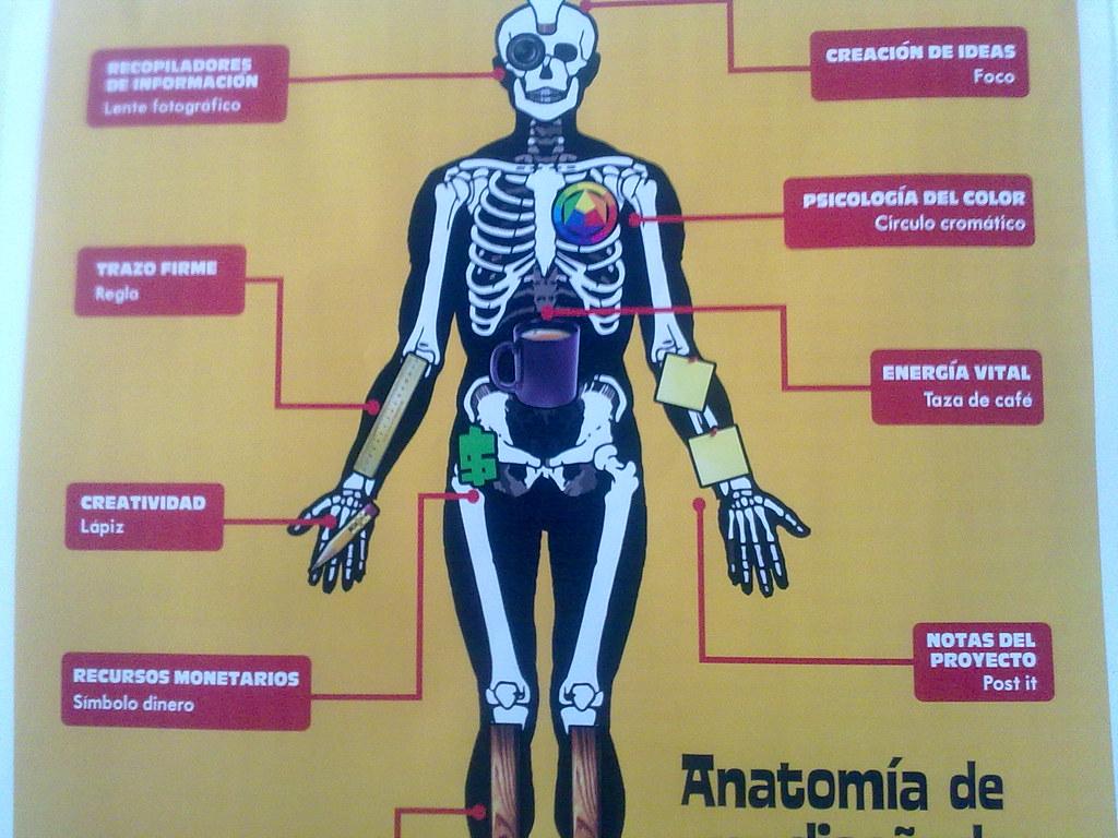 Anatomía del diseñador gráfico | Poster sobre la anatomía de… | Flickr