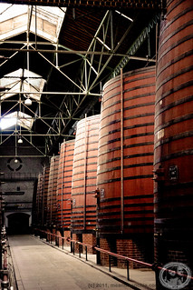 Byrrh Winery | by meandfrenchie
