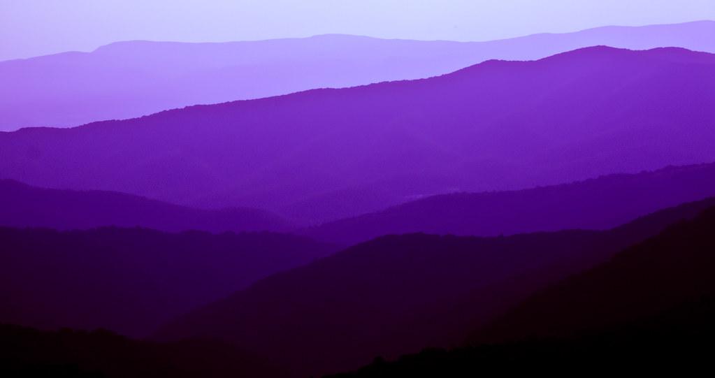 Purple And White Wall Art
