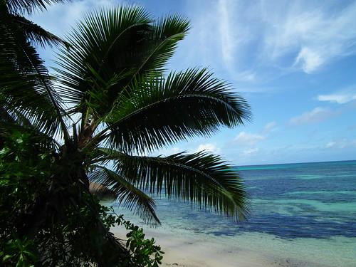 Coco Beach Hotel Antigua