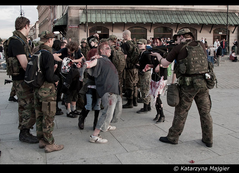 Image result for army vs zombie