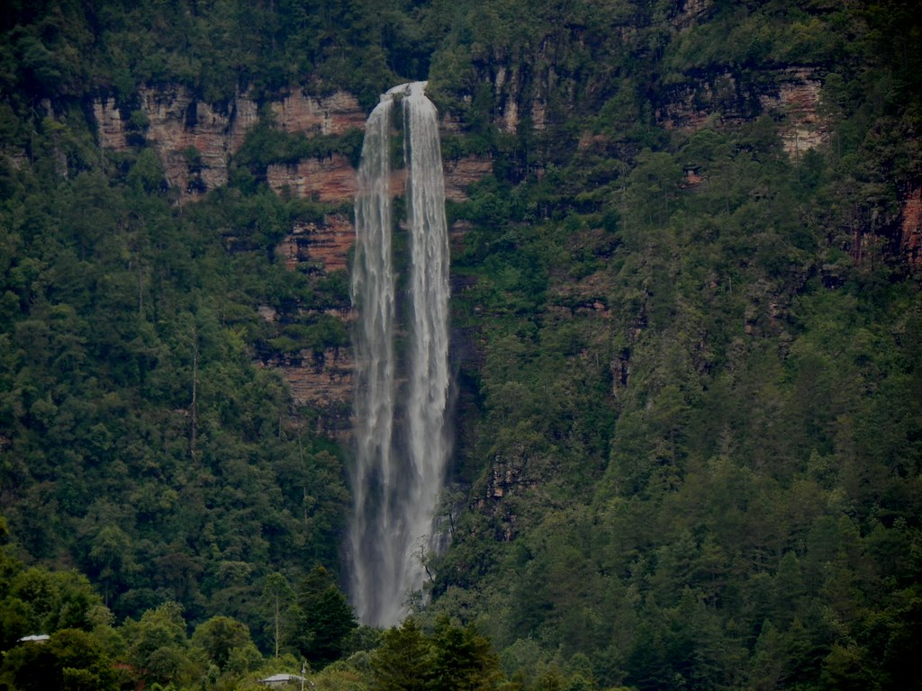 Cascada Maíz Blanco