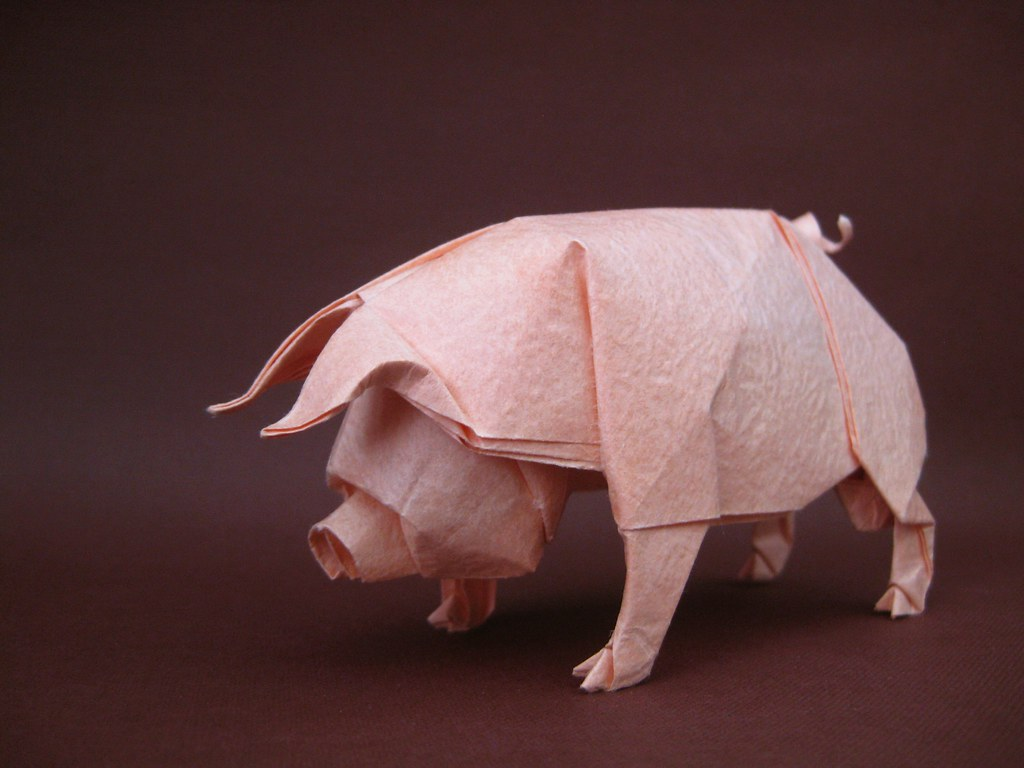 Pig - Ronald Koh | my fold 's not good. maybe i'll try ... - photo#40