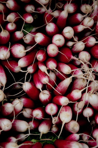 Radish - Loire Valley | by The Hungry Cyclist