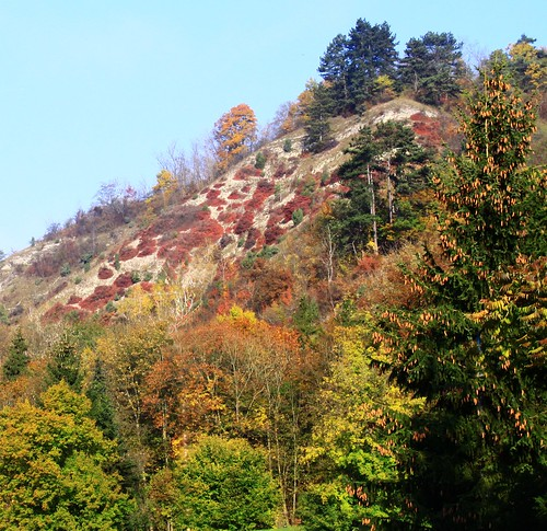 Lutherkanzel mountain with autumnal decoration | by :Linda: