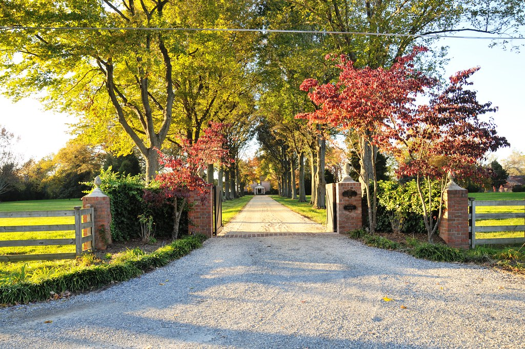 Tree Lined Driveway Queenstown Md William Johns Flickr