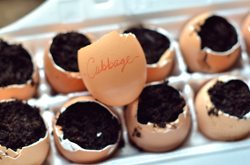 Eggshell Labels | by Simply Vintagegirl