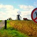 No Don Quixote
