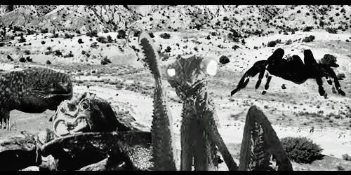 Vs >> Deadly Mantis vs. Giant Tarantula vs. Black Scorpion vs. G…   Flickr