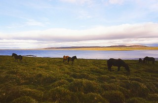 Iceland, 2000 August | by tango-