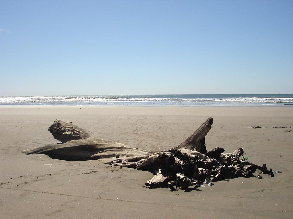 Playa Espino Usulutan El Salvador Desde La Posada De