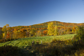 Fall Foliage trip to New Hampshire 2011 | by Anthony Quintano