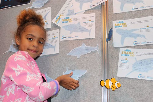 Big Shark Shout Out Wall | by Project AWARE Foundation
