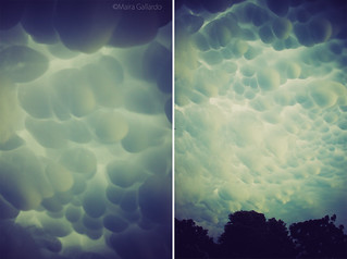 Mammatus clouds. | by maira.gall