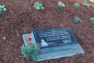 Honorary plaque for those who died at Camarillo State Hospital | by California State University Channel Islands