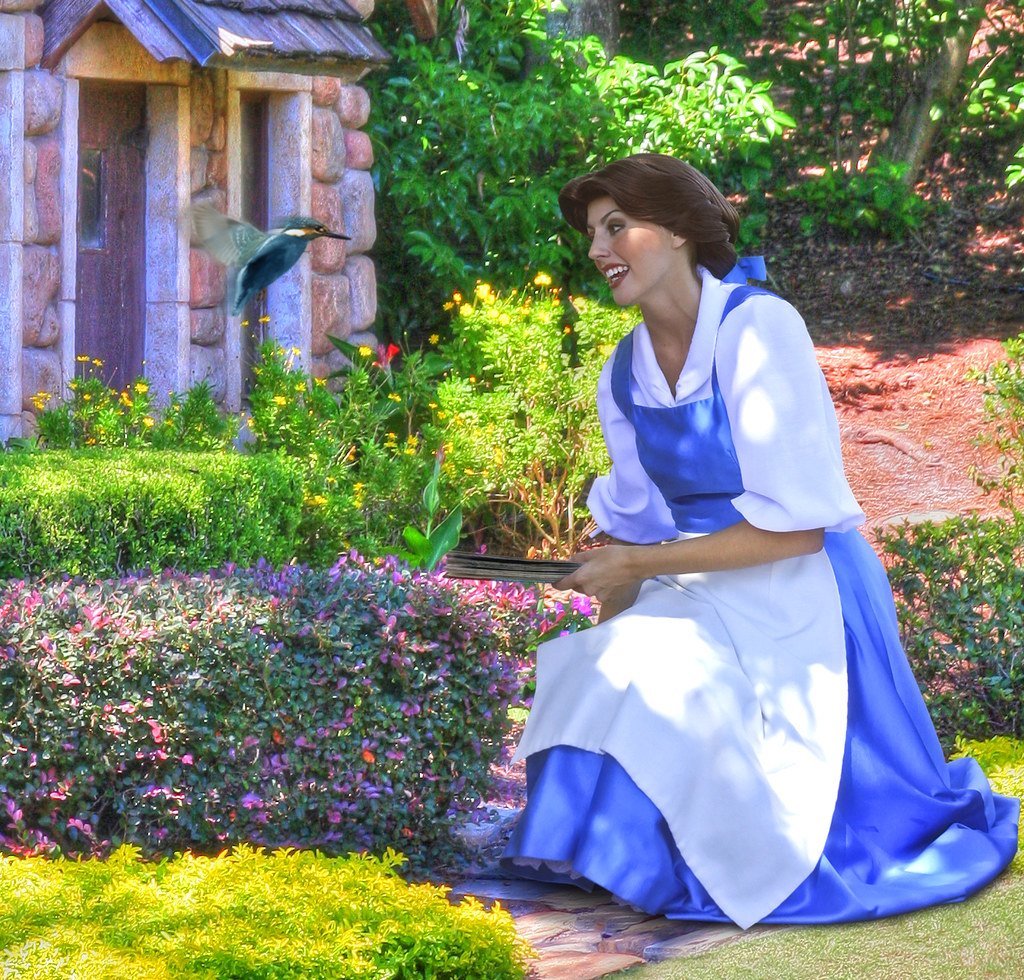 Time for a story with belle epcot 39 s world showcase for Belle case single story