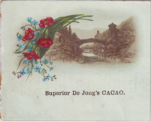 CACAO DE JONG SEPIA VIEW WOTH COLOURED FLOWER SPRAY 1 | by patrick.marks