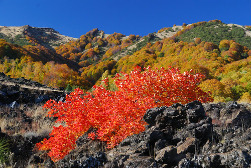 The colours of Etna in Autumn | by Giuseppe Finocchiaro