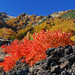 The colours of Etna in Autumn