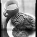 Church Street Coffee & Books (coffee and cookies)