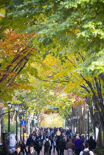 Locust Walk, University of Pennsylvania | by University Communications - Web